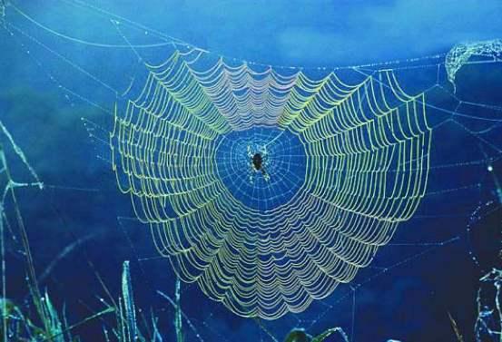 HZ. Ömer Örümcekli Mağara